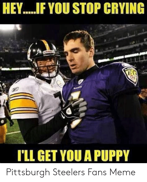 25 Best Memes About Pittsburgh Steelers Fans
