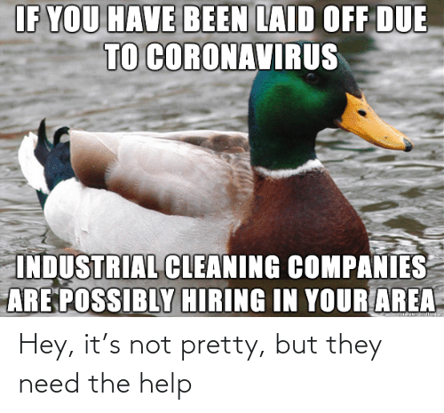 the help: Hey, it's not pretty, but they need the help