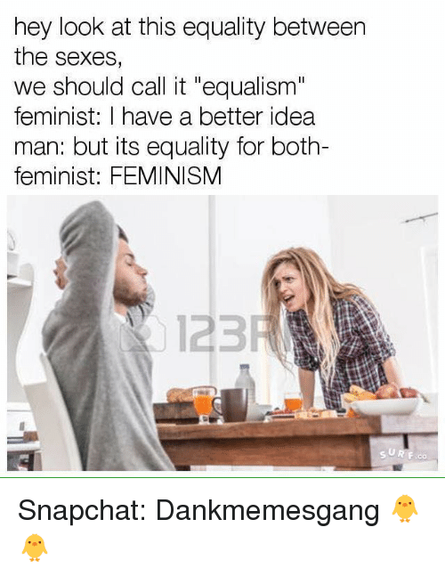 """Snapchater: hey look at this equality between  the sexes,  we should call it """"equalism""""  feminist: I have a better idea  man: but its equality for both-  feminist: FEMINISM  123 Snapchat: Dankmemesgang 🐥🐥"""