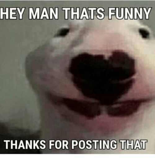 Thats Funny: HEY MAN  THATS FUNNY  THANKS FOR POSTING THAT