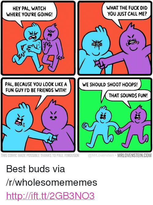 """Ferguson: HEY PAL, WATCH  WHERE YOU'RE GOING!  WHAT THE FUCK DID  YOU JUST CALL ME?  OLO  PAL, BECAUSE YOU LOOK LIKE A  FUN GUY I'D BE FRIENDS WITH!  WE SHOULD SHOOT HOOPS!  THAT SOUNDS FUN!  THIS COMIC MADE POSSIBLE THANKS TO PAUL FERGUSON @MrLovenstein MRLOVENSTEIN.COM <p>Best buds via /r/wholesomememes <a href=""""http://ift.tt/2GB3NO3"""">http://ift.tt/2GB3NO3</a></p>"""