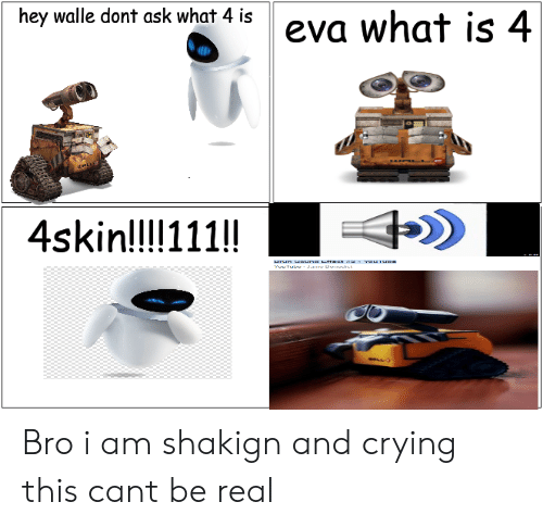 walle: hey walle dont ask what 4 is  eva what is 4  4skin!!!!111!!  ounub  urun una LTTCT  wTul Jae dist Bro i am shakign and crying this cant be real