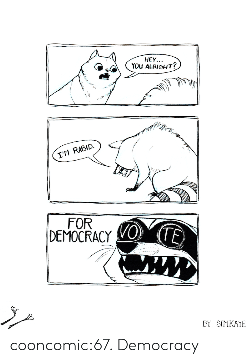 Tumblr, Blog, and Http: HEY...  YOU ALRIGHT?  I'M RABIC.  FOR  DEMOCRACY E  BY SIMKAYE cooncomic:67. Democracy