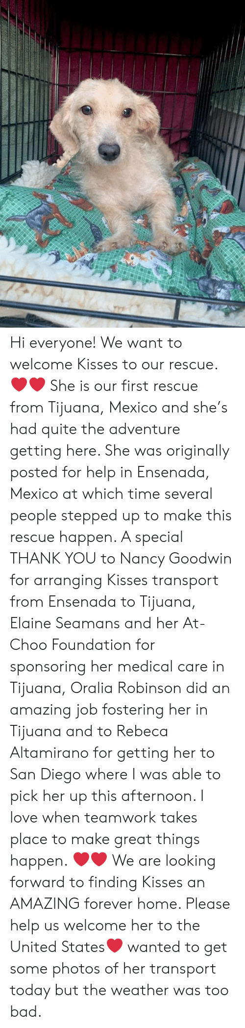 Bad, Love, and Memes: Hi everyone! We want to welcome Kisses to our rescue. ❤️❤️ She is our first rescue from Tijuana, Mexico and she's had quite the adventure getting here. She was originally posted for help in Ensenada, Mexico at which time several people stepped up to make this rescue happen. A special THANK YOU to Nancy Goodwin for arranging Kisses transport from Ensenada to Tijuana, Elaine Seamans and her At-Choo Foundation for sponsoring her medical care in Tijuana, Oralia Robinson did an amazing job fostering her in Tijuana and to Rebeca Altamirano for getting her to San Diego where I was able to pick her up this afternoon. I love when teamwork takes place to make great things happen. ❤️❤️  We are looking forward to finding Kisses an AMAZING forever home. Please help us welcome her to the United States❤️   wanted to get some photos of her transport today but the weather was too bad.