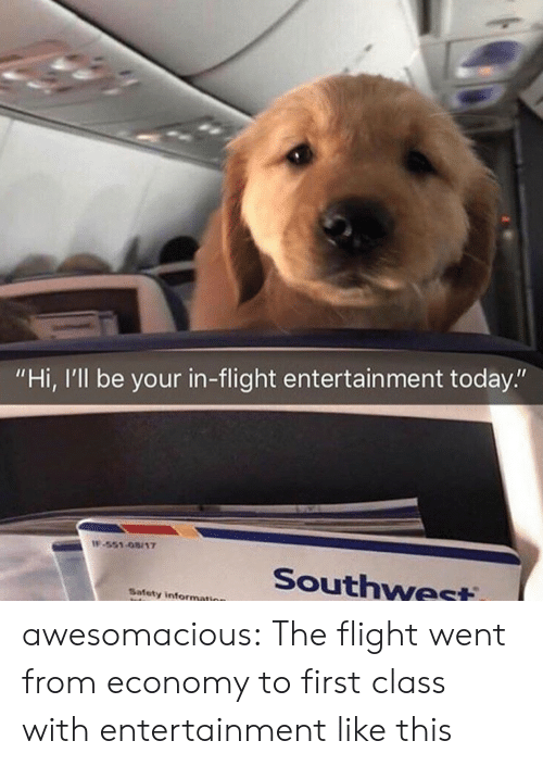 "Tumblr, Blog, and Flight: ""Hi, I'll be your in-flight entertain ment today.""  IF-551-08/17  Southwest  Safety information awesomacious:  The flight went from economy to first class with entertainment like this"