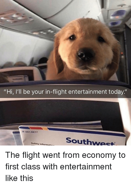 """Southwest: """"Hi, I'll be your in-flight entertainment today.""""  -551-08/17  Southwest  Safety informati The flight went from economy to first class with entertainment like this"""