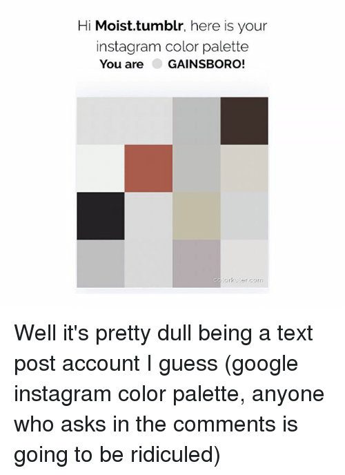 Google, Instagram, and Memes: Hi Moist.tumblr, here is your  instagram color palette  You are GAINSBORO!  lorkaler.com Well it's pretty dull being a text post account I guess (google instagram color palette, anyone who asks in the comments is going to be ridiculed)