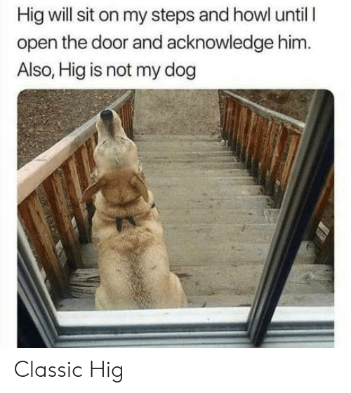 Dog, Him, and Open: Hig will sit on my steps and howl until I  open the door and acknowledge him.  Also, Hig is not my dog Classic Hig