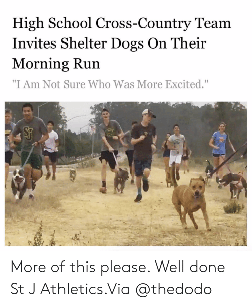 """Dogs, Instagram, and Run: High School Cross-Country Team  Invites Shelter Dogs On Their  Morning Run  """"I Am Not Sure Who Was More Excited."""" More of this please. Well done St J Athletics.Via @thedodo"""