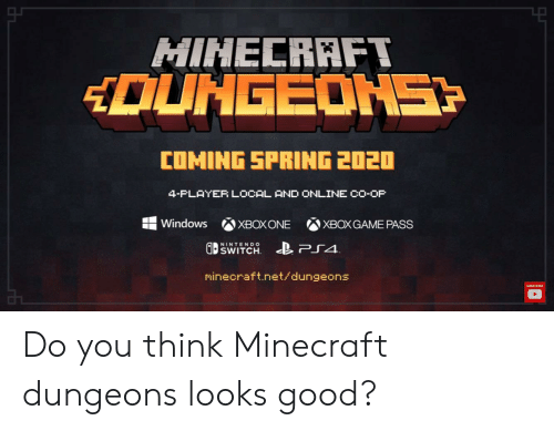 Ps4 Co Op Games 2020.Hinecraft Dungeons Coming Spring 2020 4 Flayer Local And