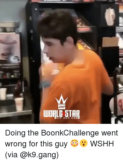 Memes, Wshh, and Gang: HIP HOP.CO M Doing the BoonkChallenge went wrong for this guy 😳😮 WSHH (via @k9.gang)