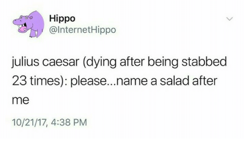 hippo: Hippo  @lnternetHippo  julius caesar (dying after being stabbed  23 times): please...name a salad after  me  10/21/17, 4:38 PM