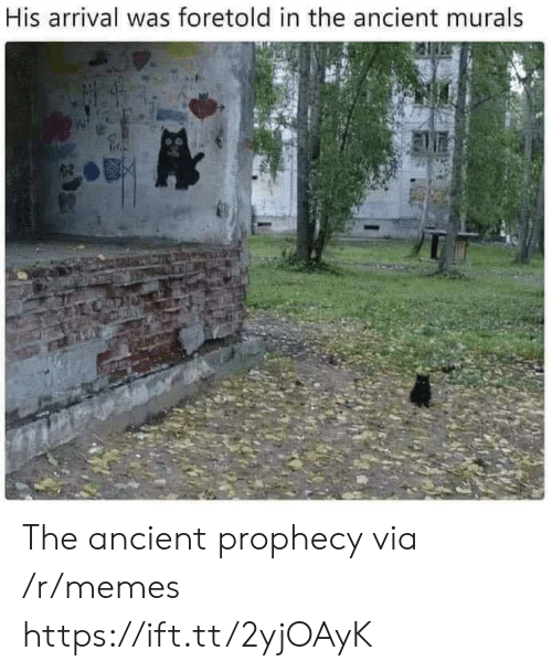 Arrival: His arrival was foretold in the ancient murals The ancient prophecy via /r/memes https://ift.tt/2yjOAyK