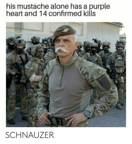 Being Alone, Heart, and Purple: his mustache alone has a purple  heart and 14 confrmed kills SCHNAUZER
