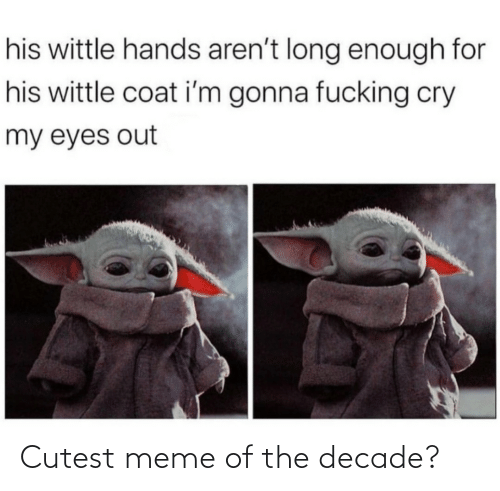 cutest: his wittle hands aren't long enough for  his wittle coat i'm gonna fucking cry  my eyes out Cutest meme of the decade?