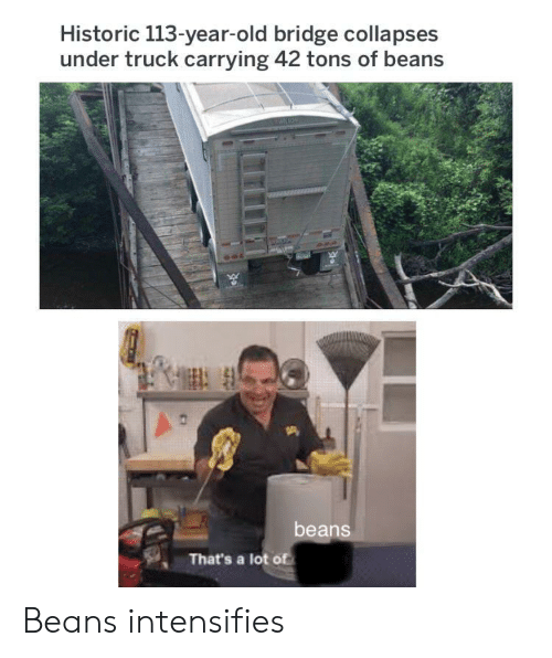 beans: Historic 113-year-old bridge collapses  under truck carrying 42 tons of beans  beans  That's a lot of Beans intensifies