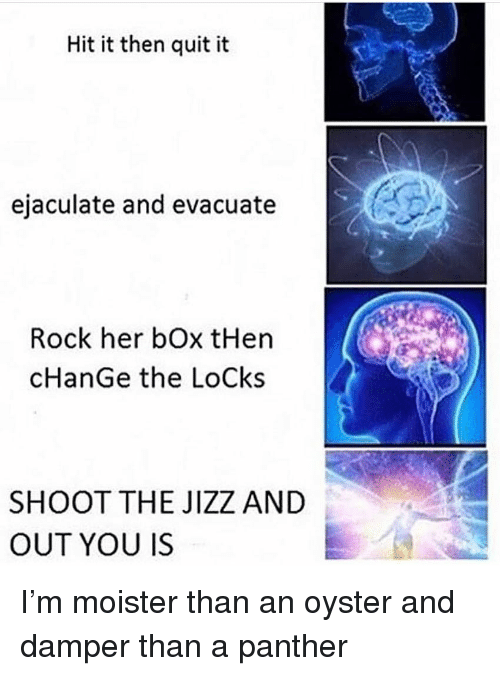 jizz: Hit it then quit it  ejaculate and evacuate  Rock her bOx tHen  cHanGe the LoCks  SHOOT THE JIZZ AND  OUT YOU IS I'm moister than an oyster and damper than a panther