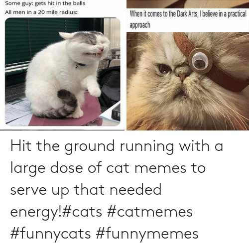 Cat Memes: Hit the ground running with a large dose of cat memes to serve up that needed energy!#cats #catmemes #funnycats #funnymemes