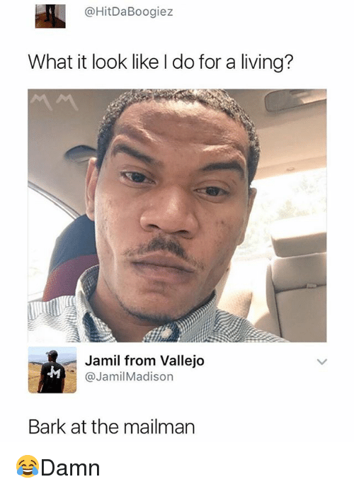 Memes, Living, and 🤖: @HitDaBoogiez  What it look like I do for a living?  Jamil from Vallejo  @JamilMadison  Bark at the mailman 😂Damn