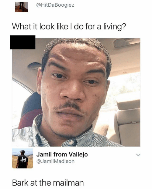 Dank Memes, Living, and What: @HitDaBoogiez  What it look like l do for a living?  Jamil from Vallejo  @JamilMadison  Bark at the mailman