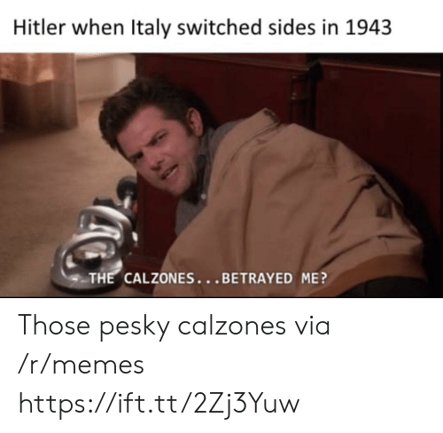 Memes, Hitler, and Italy: Hitler when Italy switched sides in 1943  THE CALZONES...BETRAYED ME? Those pesky calzones via /r/memes https://ift.tt/2Zj3Yuw