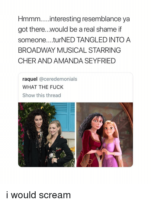 Cher, Scream, and Fuck: Hmmm...interesting resemblance ya  got there.. .would be a real shame if  someone....turNED TANGLED INTO A  BROADWAY MUSICAL STARRING  CHER AND AMANDA SEYFRIED  raquel @ceredemonials  WHAT THE FUCK  Show this thread i would scream
