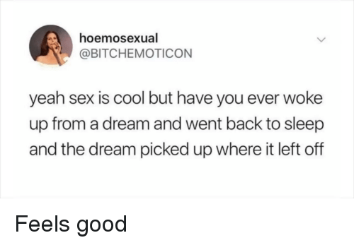 feels good: hoe  @BITCHEMOTICON  mosexual  yeah sex is cool but have you ever woke  up from a dream and went back to sleep  and the dream picked up where it left off Feels good