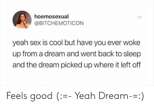 A Dream, Sex, and Yeah: hoemosexual  @BITCHEMOTICON  yeah sex is cool but have you ever woke  up from a dream and went back to sleep  and the dream picked up where it left off Feels good (:=- Yeah Dream-=:)