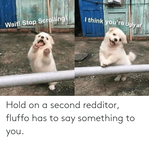 You, Hold, and Say Something: Hold on a second redditor, fluffo has to say something to you.