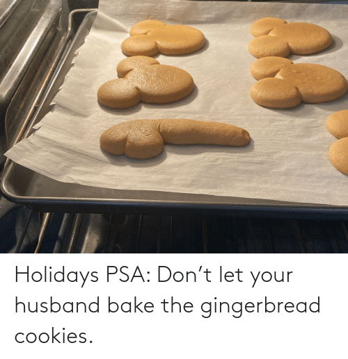 gingerbread: Holidays PSA: Don't let your husband bake the gingerbread cookies.