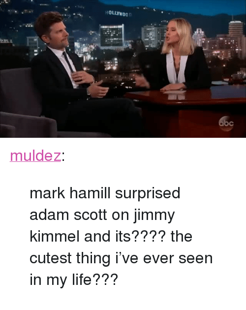 """Adam Scott: HOLLYWOO <p><a href=""""http://muldez.tumblr.com/post/160326250577/mark-hamill-surprised-adam-scott-on-jimmy-kimmel"""" class=""""tumblr_blog"""">muldez</a>:</p><blockquote><p>mark hamill surprised adam scott on jimmy kimmel and its???? the cutest thing i've ever seen in my life???</p></blockquote>"""