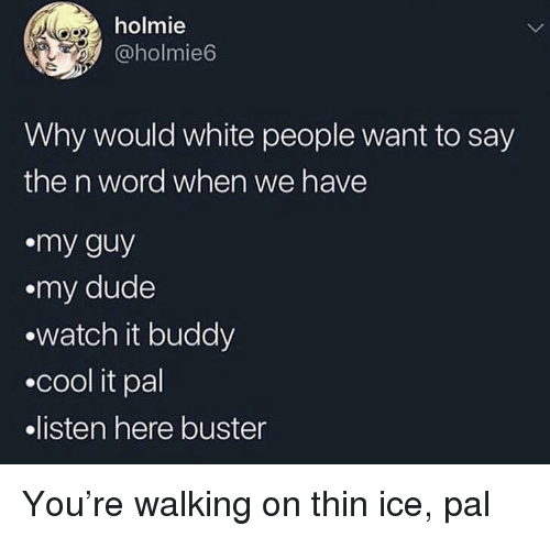 My Guy: holmie  @holmie6  Why would white people want to say  the n word when we have  my guy  .my dude  watch it buddy  .cool it pal  listen here buster You're walking on thin ice, pal