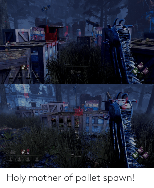 pallet: Holy mother of pallet spawn!