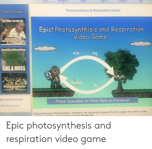 Click, Funny, and Game: Hom  eachers  dents  Cohtac  Quizzes  Photosynthesis & Respiration Game!  Funny Pictures  SO YOUR TELLING ME  Epic! Photosynthisis and Respiration  Video Game!  PHOTOSYNTHESIS AND  RESPIRATION ARE OPPOSITES  Surviving on Photosynthesis  H,O  co  LIKE A MOSS  ATP  Photosynthesis!  Sponsors/Featured  Press Spacebar or Click Here to Continue!  MROSupply.com  Topics Covered: Photosynthesis, respiration, the connection between the two, oxygen and carbon cycles,  duuctsnet eguations for each process etc. Epic photosynthesis and respiration video game