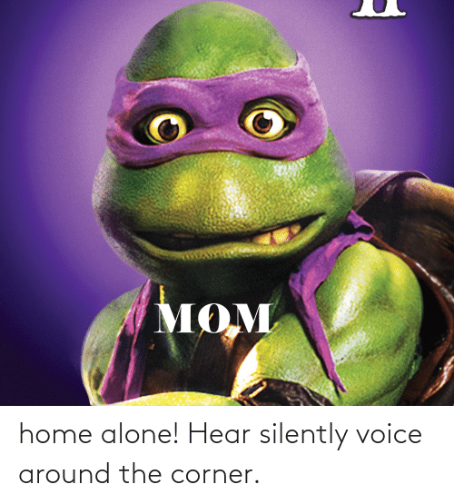 Home Alone: home alone! Hear silently voice around the corner.