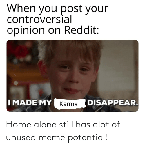 Home Alone: Home alone still has alot of unused meme potential!