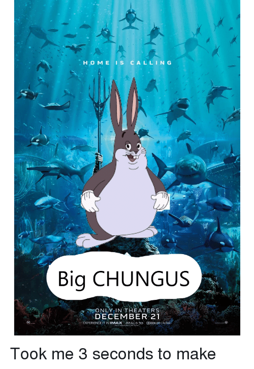 Home Is Calling Big Chungus Only In Theaters December 21 Dc