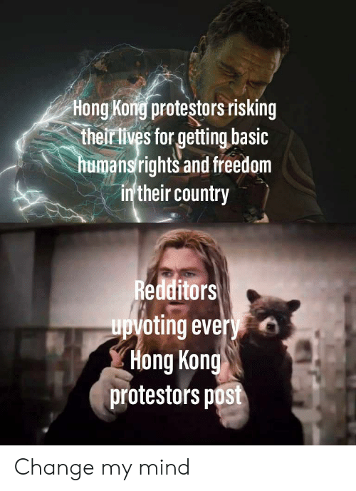 Their Lives: Hong Kong protestors risking  their lives for getting basic  humansrights and freedom  in'their country  Redditors  upvoting every  Hong Kong  protestors post Change my mind