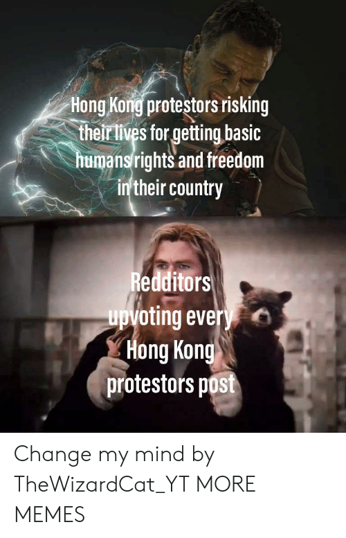 Their Lives: Hong Kong protestors risking  their lives for getting basic  humansrights and freedom  in'their country  Redditors  upvoting every  Hong Kong  protestors post Change my mind by TheWizardCat_YT MORE MEMES