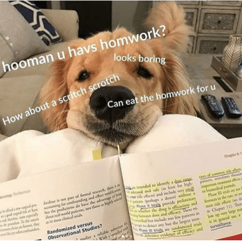 Cher: hooman u havs homwork?  looks borin  How about a scritch scrotch  Can eat the homwork for u  Chaper T  atee of coremon sille rdo  accwining for confounding and e madloctSn in  lybt the  the oen about real workd  i  loan for  y ik feces) and include very pmuall  putienes, nos thone as highly sla  treatmcet effe a  i are  as in most clinical vials  r  pakos (pthups a dozen) without a in  Phase Il trials an no  r the drug is efficacious and ferenos in the rate, or ew  Randomized versus  Observational Studies?  btwoen done and cthcacy  tinow patienn in in Cher ). Ten  any bat the largest treat low up very large mun  as are randomized trias is in geocral ox, a  tie iden of cthcasy and survelance.