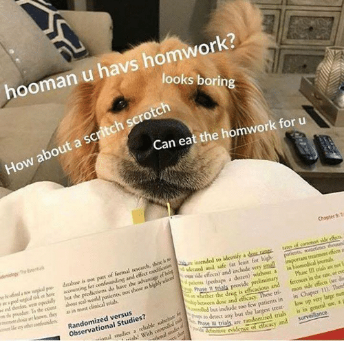 Patient, World, and Cent: hooman u havs homwork?  looks boring  How about a scritch scrotch  Can eat the homwork for u  Chapter 9: Tr  of formal recarch, thire h e  o darabusc is not part  or have arcounting for conf  a doncrangs tats of comm ade dests  ant treamet effecs an  wan epvialy but  aceounting for confounding and  o  eated and afe at least for high patents, somctima th  the predictions do have the advantege of heitended to identif  n puda Te ahe cent shout red world patient  nmecmen uiir r lown, thoy as in most dinical trialk  yue ilk fecto) and include very sml  Picets (perhaps a dozen without a in  not those av highly  l trials provide preliminary  Phase Il rias ane oo t  ferences in the rate, oto  Randomized versus  Observational Studies?  whether the drug į, efficacious and  ip berween dosc and eficacy  tri mon side effices gee d  dt  With contd  but include too few patients in in Chaper  ional studics a rable  p oty r  ect any bat t  trial are randomized truls is in senctal sse, s  tive rvidenes of ccay and sunveilance