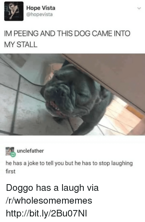 Http, Hope, and Doggo: Hope Vista  @hopevista  IM PEEING AND THIS DOG CAME INTO  MY STALL  unclefather  he has a joke to tell you but he has to stop laughing  first Doggo has a laugh via /r/wholesomememes http://bit.ly/2Bu07NI