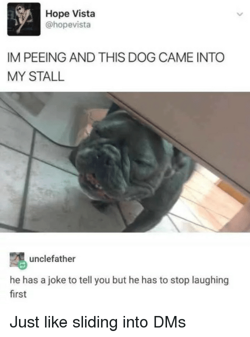 Hope, Dog, and Vista: Hope Vista  @hopevista  IM PEEING AND THIS DOG CAME INTO  MY STALL  unclefather  he has a joke to tell you but he has to stop laughing  first Just like sliding into DMs