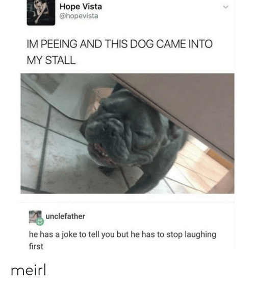 Hope, MeIRL, and Dog: Hope Vista  @hopevista  IM PEEING AND THIS DOG CAME INTO  MY STALL  unclefather  he has a joke to tell you but he has to stop laughing  first meirl