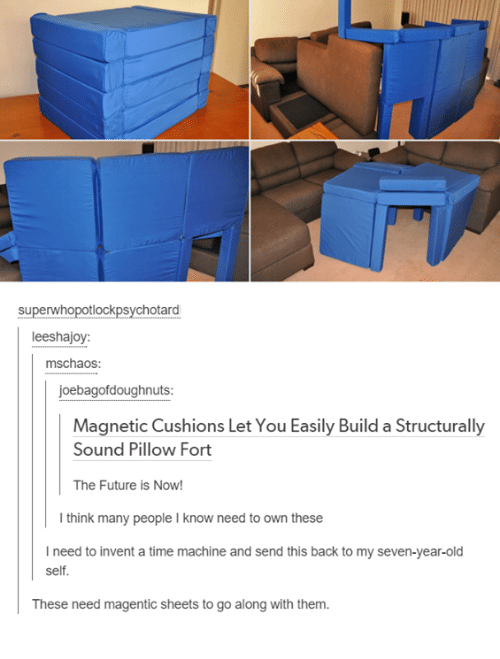Funny, Future, and Tumblr: hotard  leeshajoy:  mschaos:  joebagofdoughnuts:  Magnetic Cushions Let You Easily Build a Structurally  Sound Pillow Fort  The Future is Now!  I think many people l know need to own these  I need to invent a time machine and send this back to my seven-year-old  self.  These need magentic sheets to go along with them.