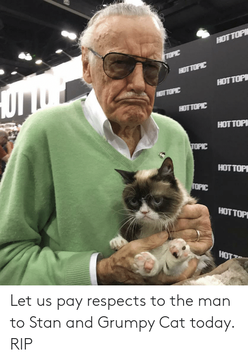 Stan, Grumpy Cat, and Today: HOTTOP  HOT TOPI Let us pay respects to the man to Stan and Grumpy Cat today. RIP