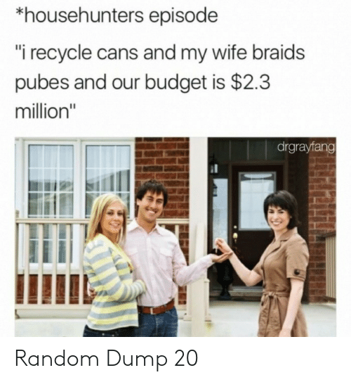 """Braids, Budget, and Wife: *househunters episode  """"i recycle cans and my wife braids  pubes and our budget is $2.3  million""""  drgrayfang Random Dump 20"""
