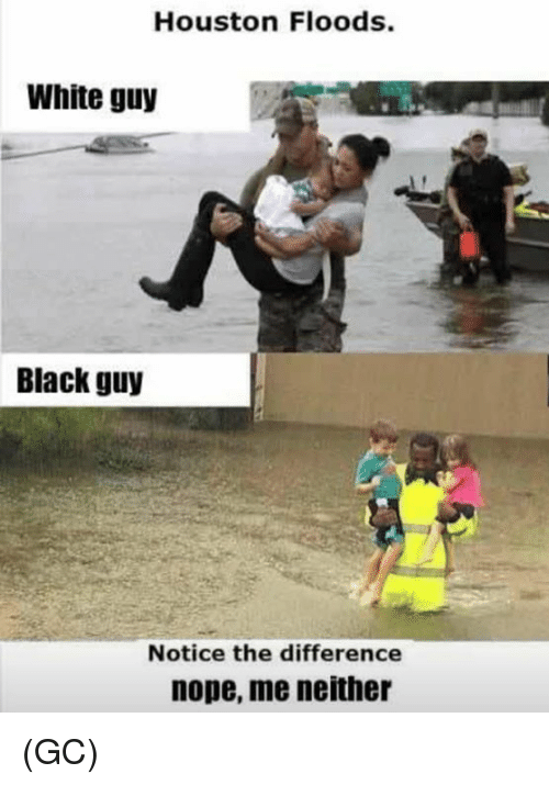 Noping: Houston Floods.  White guy  Black guy  Notice the difference  nope, me neither (GC)