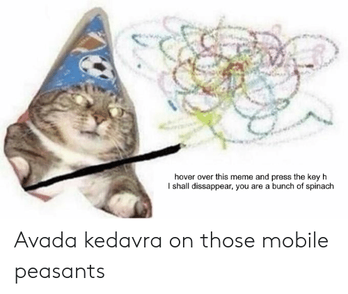Meme, Mobile, and Dank Memes: hover over this meme and press the key h  I shall dissappear, you are a bunch of spinach Avada kedavra on those mobile peasants