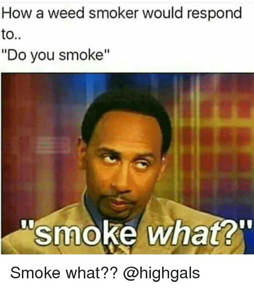 "Memes, Weed, and 🤖: How a weed smoker would respond  to..  ""Do you smoke""  smoke what? Smoke what?? @highgals"